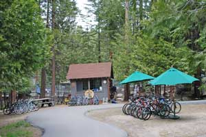 Photo of Pinecrest Lake bicycle rental  area