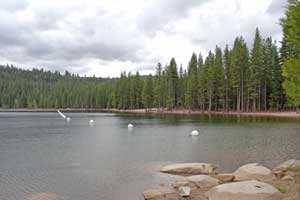 Pinecrest Lake swimming area