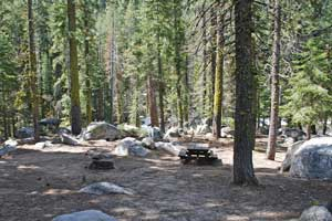 Clark Fork Campgrounds