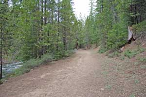 Hiking Trail to Strawberry